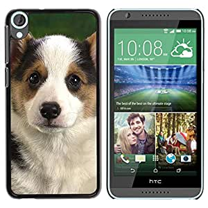 PC/Aluminum Funda Carcasa protectora para HTC Desire 820 Corgi Puppy Pembroke Welsh Dog / JUSTGO PHONE PROTECTOR