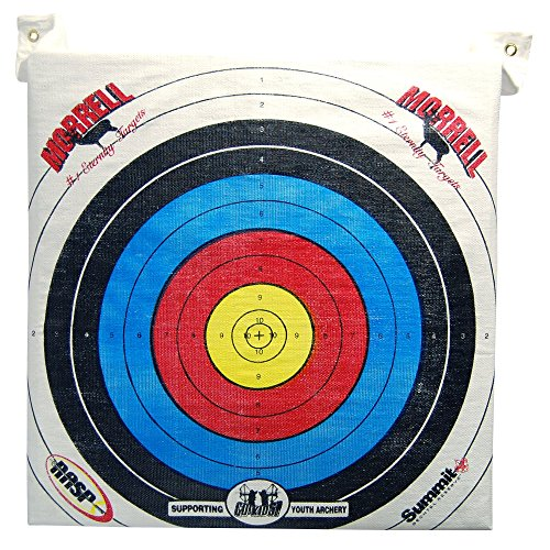Morrell Youth Field Point Bag Archery Target - has NASP Rings, for Traditional or Youth Bows 30lbs and Less (Large Archery Bag Target)