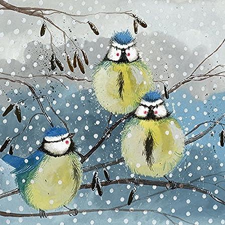 Alex Clark tarjetas navideñas azul tetas Pack de 5 + 1 libre tarjeta con cada pedido: Amazon.es: Hogar