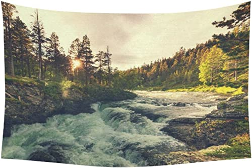INTERESTPRINT Woodland Nature Wall Art Home Decor, River in Norway Tapestry Wall Hanging Art Sets 60 X 40 Inches