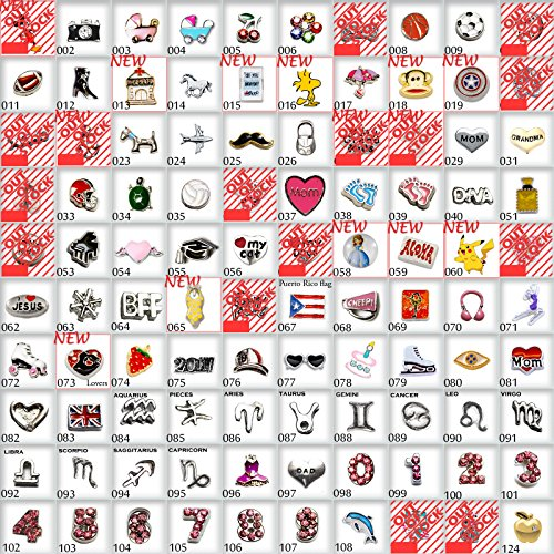Choose 10pc of Mix Floating Charms for Metal Floating Memory Locket