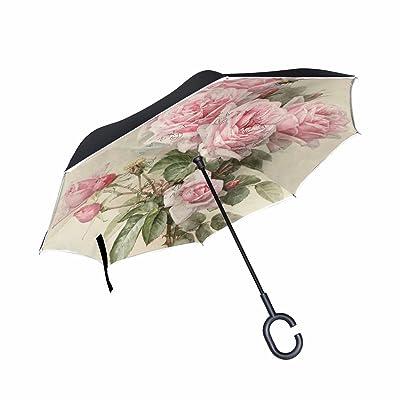 30d2380fd550 Umbrellas