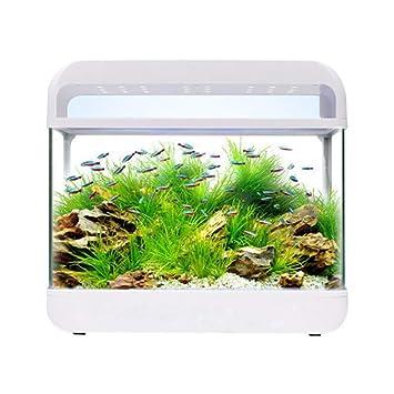 LSHUAIDJ Acuario Acuario Acuario pecera Acuario Acuario pequeño Mini Vidrio Acuario de Escritorio hogar ecológico pecera 3 Luces LED de Color: Amazon.es: ...