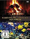 Fireplace/aquarium