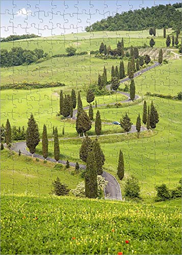(Media Storehouse 252 Piece Puzzle of Cypress Trees in Tuscany, Italy, Europe (12008368))