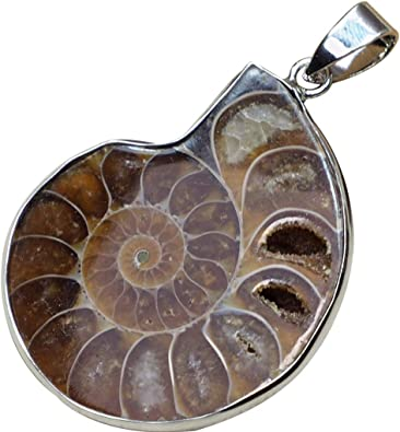 Nautilus shell Fossil Handmade fossil Pendant Silver Ammonite Pendant Ammonite Jewelry
