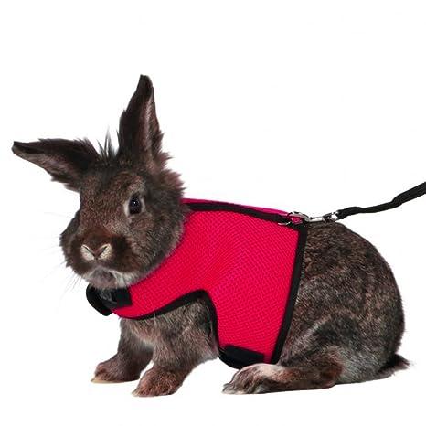 UEETEK arnés de conejo correa de arnés de conejo, arnés ajustable ...