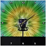 3dRose dpp_173456_2 Tie Dye Disc Golf Basket Colorful Disc Golf Tie Dye Basket Design Wall Clock, 13 by 13-Inch Review