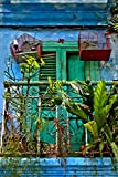 Balcony and Bird Cages, Havana, Cuba, Fine Art Photograph. I loved that the people who lived here in an apartment in a very run down area, turned it into such a colorful wonderful memorable place to live. I left my heart in Cuba! Can't wait t...