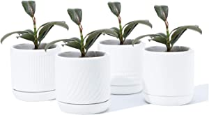 POTEY 053501 Planter Pots Indoor - 4.2 Inch Glazed Ceramic Modern Planters Flowerpots Bonsai Container with Drainage Holes & Saucer for Plants Flower Aloe(Set of 4, Shiny White, Plants Not Included)