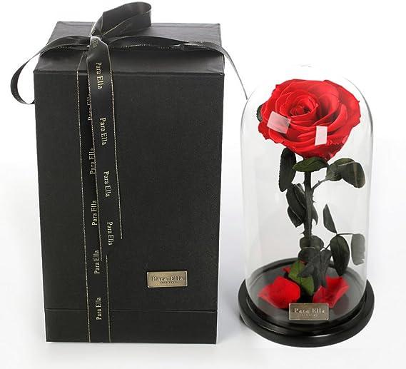 Only rose Flor Inmortal Gigante,Caja de Cubierta de Cristal Principito Las Rosas Flores Eterna Decoración Día de la Navidad-Rojo: Amazon.es: Hogar