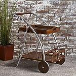 Christopher Knight Home Clover Indoor Farmhouse Cottage Acacia Wood Bar Cart, Dark Oak / Shiny Powder Coating