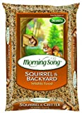 Morning Song 1017118 Squirrel and Backyard Wildlife Food, 10-Pound, My Pet Supplies