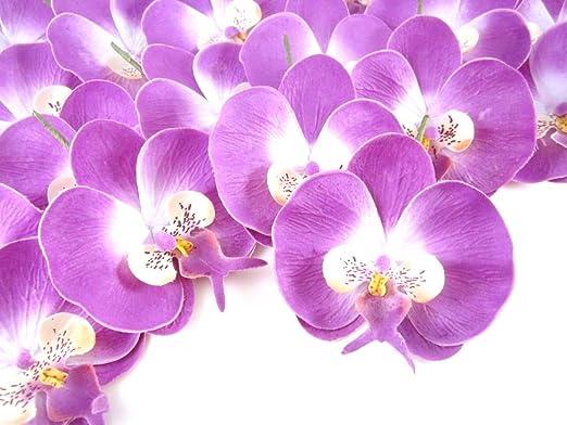 Amazon Com 100 Purple Phalaenopsis Orchid Silk Flower Heads
