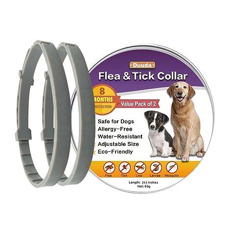 Amazon.com: Duuda 2 unidades de collar de pulgas y ...