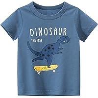Camisetas Niño Manga Corta Verano - Algodón Ropa Niño 1 a 7 Años Blusas para Niños Pequeños, T-Shirt de Cuello Redondo…