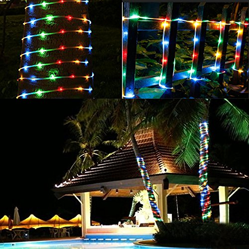 Led Rope Lights With Remote: LED Rope Lights Battery Operated Waterproof 33ft String