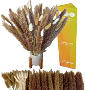 Natural Dried Pampas Grass Decor - Fluffy Small Bunny Tail Stem Feathers for Vase Boho Flowers Arrangement and Plants for Home and Wedding Decorations , 60pcs (Natural/White, 18