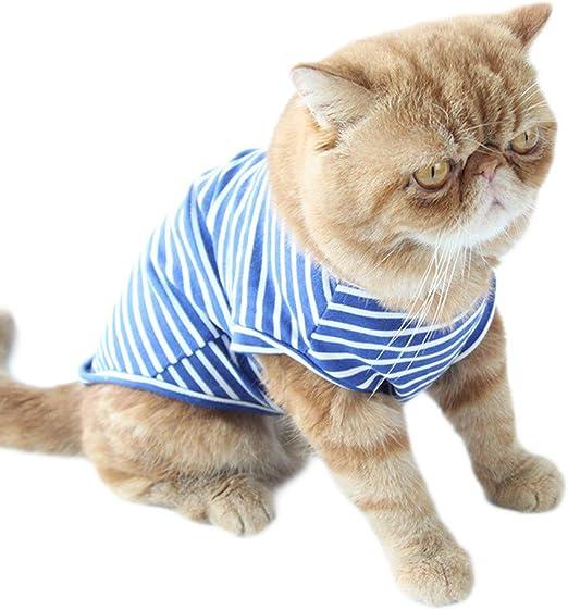 Conquro Camisa de Fondo a Rayas de Moda Gato Camiseta básica de Punto de algodón a Rayas para Perros pequeños Gatos sin Mangas Camiseta del Animal domestico del Animal domestico Pequeno Linda: