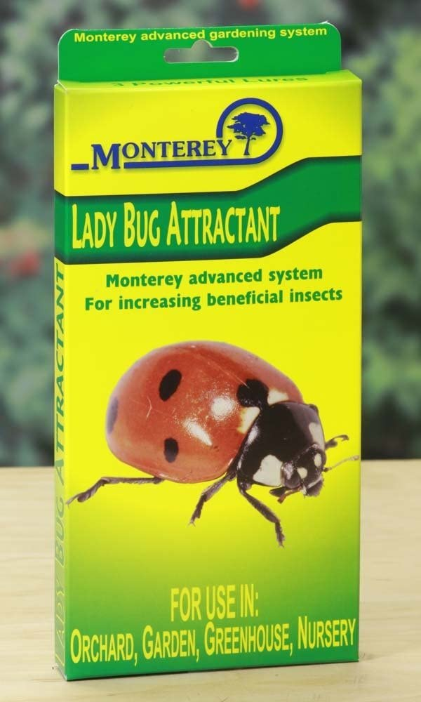 Monterey LG8510 Lady Bug Lure, Pack of 3