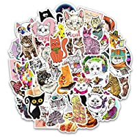 50 Pcs Luggage Stickers Laptops Stickers Skateboard Stickers Scrapbooking Stickers Phone Stickers Guitar Stickers Motorcycle Bicycle Bike Car Stickers