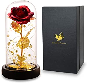 Dream of Flowers Beauty and The Beast Rose Kit, Colorful Gold Foil Rose and Led Light in Glass Dome on Black Wooden Base for Home Decor Holiday Party Wedding Anniversary