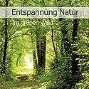 Im grünen Wald (Entspannung Natur 2) Hörbuch von Karl Heinz Dingler Gesprochen von:  div.