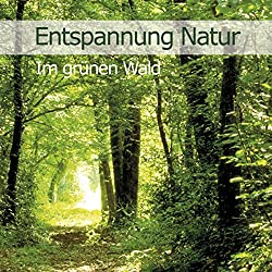 Im grünen Wald (Entspannung Natur 2)