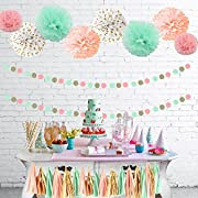 Sopeace 125 pcs Mint Peach Glitter Gold Tissue Paper Pom Pom Gold Tissue Pom Pom Paper Tassel Polka Dot Paper Garland for Baby Shower Decoration Wedding Nursery Decorations Bridal Shower