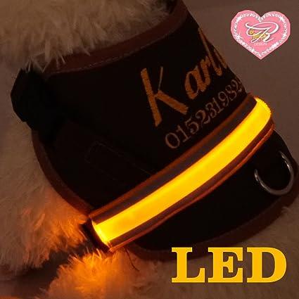 XS - XL Nombre Personalizado LED Luz para el pecho Arnés del Perro ...