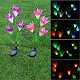 Outdoor Artificial Garden Flowers Lights - Solar Powered Lights with 4 Lily Flowers, LED Solar Decorative Lights for Garden, Patio, Courtyard, Pack of 2 (Style B)