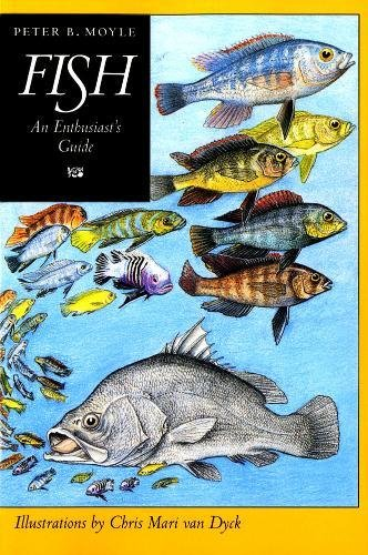 Fish: An Enthusiast's Guide