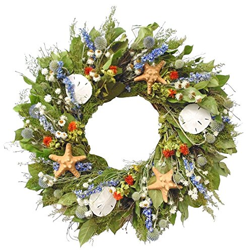 Coastal-Wreath-22-Catalina-Island-Natural-Seashell-Indoor-Wreath