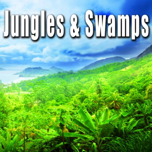 indonesian daytime jungle ambience with birds insects gibbons by sound ideas on amazon music. Black Bedroom Furniture Sets. Home Design Ideas