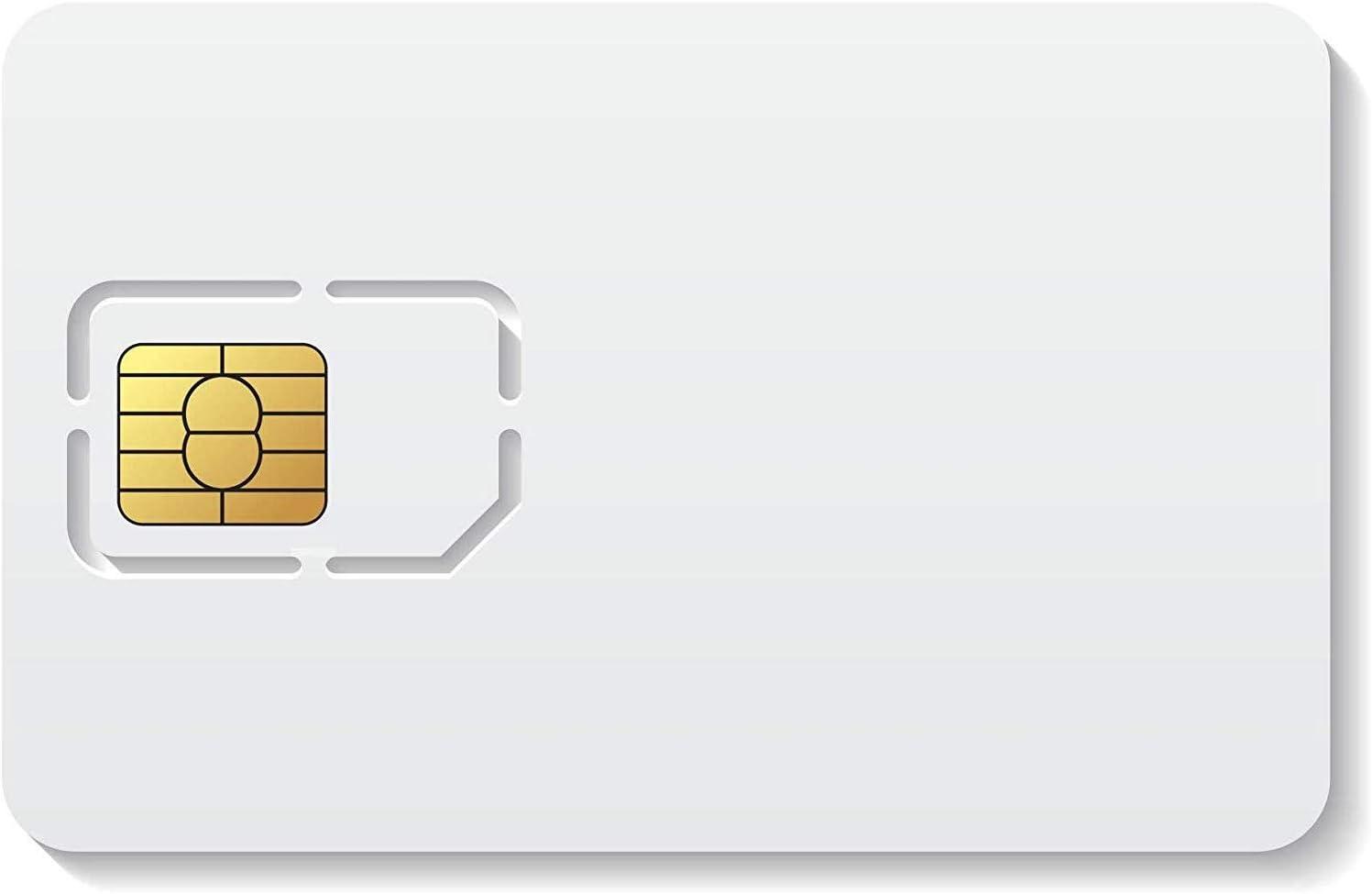 Easy M2M Tarjeta SIM prepago para Dispositivos IoT/M2M (smartwatch, GPS, domótica) | Incluye €10 de Recarga Inicial | Solo para Empresas