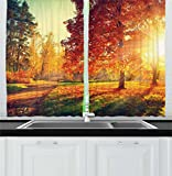 Ambesonne Fall Kitchen Curtains, Vibrant Misty Day in Forest Sun Rays Trees Foliage Fallen Leaves Calm View, Window Drapes 2 Panel Set for Kitchen Cafe, 55 W X 39 L Inches, Orange Yellow Green Review