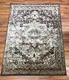 Antep Rugs Zeugma Collection Olympus Polypropylene Area Rug (Beige/Brown, 7'10 x 10′) Review