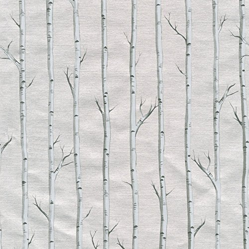 Entertaining with Caspari 9655RC Birch Continuous Gift Wrap Roll, 8', Silver -