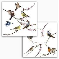KOMAR-FREESTYLE ventana-pegatinas Birds, 31 x 31 cm/2 hojas