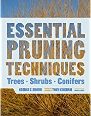 Essential Pruning Techniques: Trees, Shrubs, and Conifers