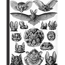 """Vintage Bat Animal Nature Illustration Journal: 8"""" x 10"""" Bullet Journal - Blank Notebook, 1/4 inch Dot Grid with 160 Pages, Sturdy Matte Softcover Dotted Paper, Perfect Bound, Travel Size Diary Book"""