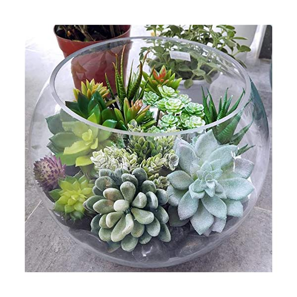 AuroraBotanical 14 pcs Artificial/Faux/Fake Succulent Plants | Assorted Variety Pack of Unpotted Realistic Plastic Cactus Succulents for Home Greenery Decoration