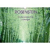 Rosenstein - Erhaltenswerter Park in Stuttgart (Wandkalender 2016 DIN A4 quer): Die Schönheit des naturgeschützten Rosenstein-Parks in Stuttgart vor ... (Monatskalender, 14 Seiten ) (CALVENDO Orte)