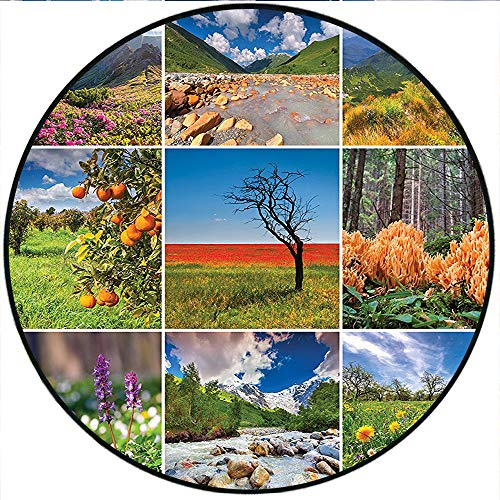 Short Plush Round Carpet Collage with Summer Scenery Majestic Mountains Waterfalls High Lands Environment Decorative Living Room Computer Chair 31.5