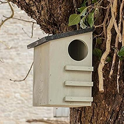 Wondrous Ckb Ltd Squirrel House Nesting Box Made From Pine Wood Outdoor Wildlife Shelter Download Free Architecture Designs Photstoregrimeyleaguecom