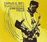 Emerging Field by Faruq Z Bey (2010-08-17)