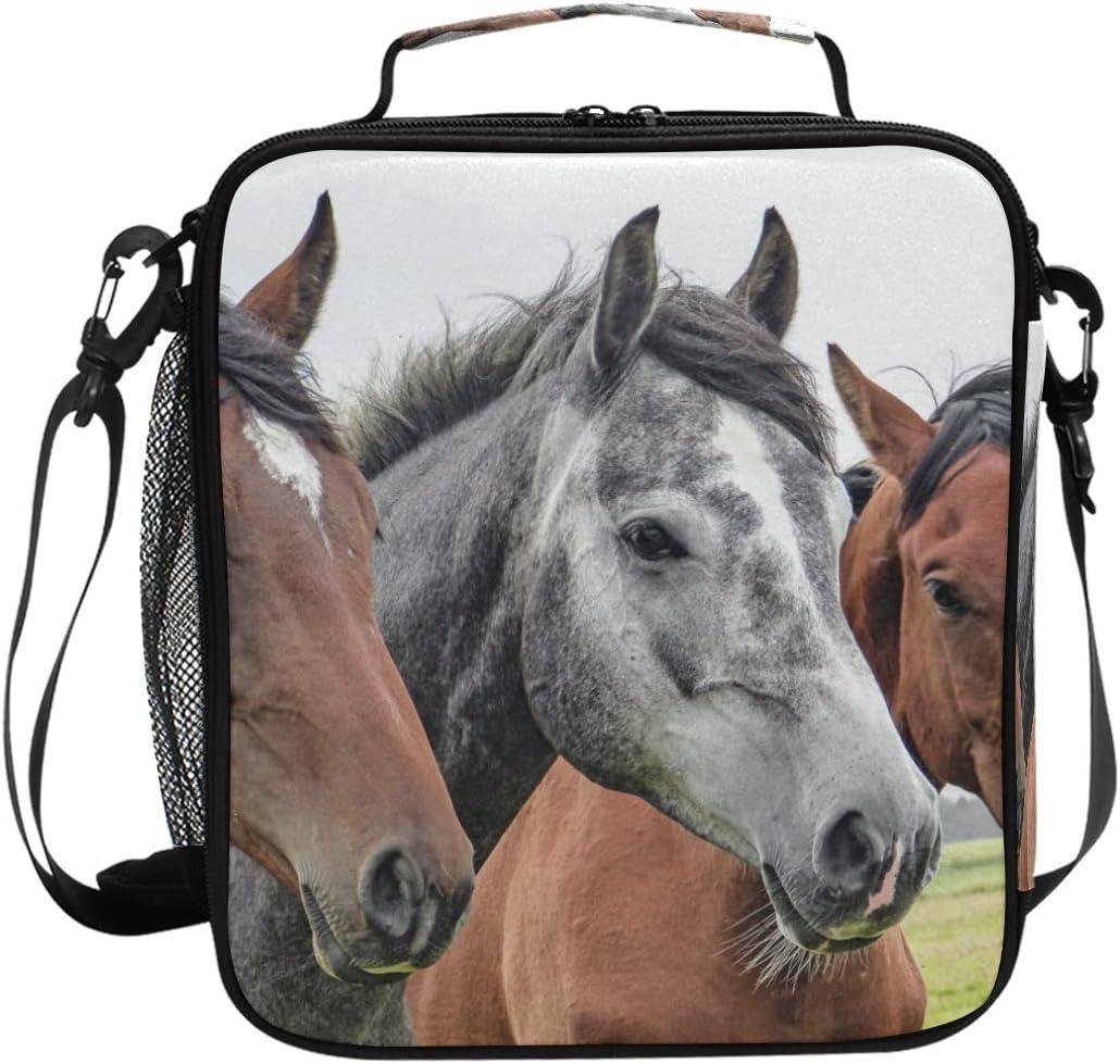 Bolsa de almuerzo con diseño de tres caballos de cabeza de animales, aislada, cuadrada, portátil, de gran capacidad, para viajes, picnic, escuela, bolsa de almuerzo, para niños, niñas y adolescentes
