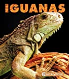 Iguanas, Kathryn Stevens, 1592968481