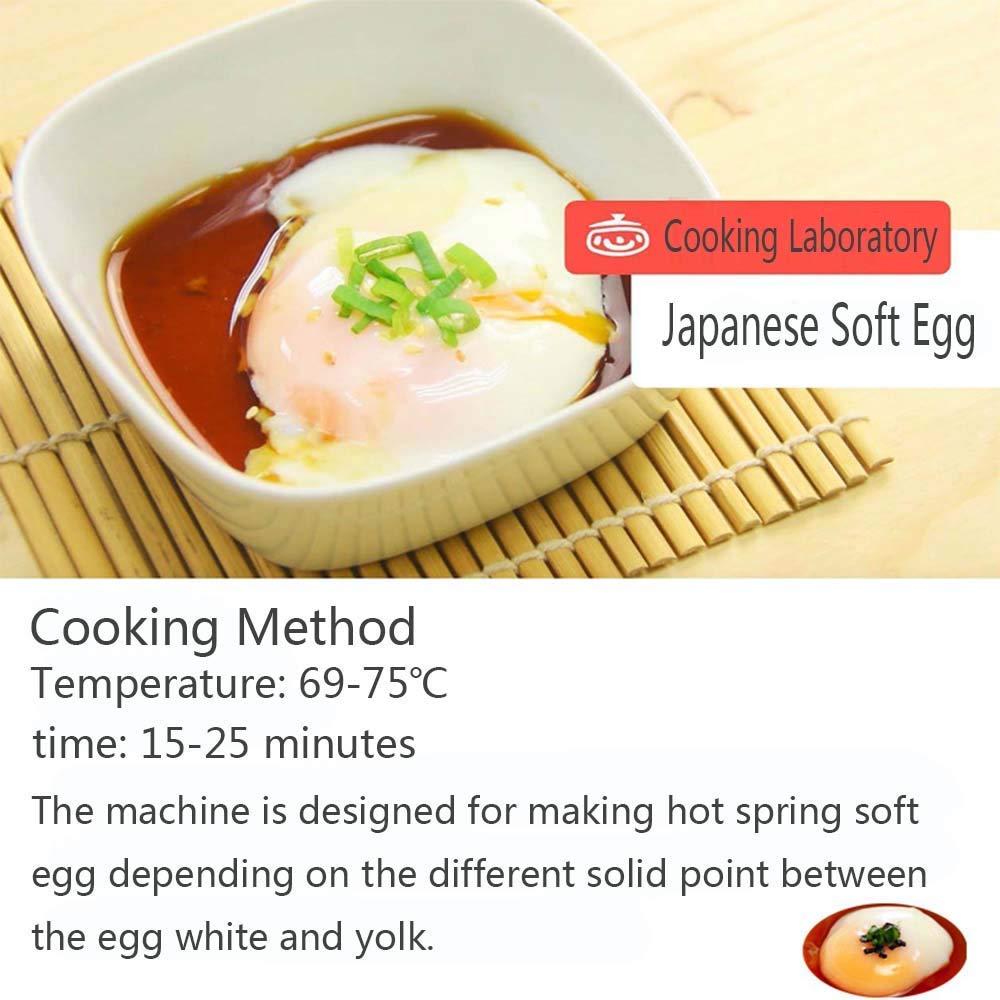 Li Bai Commercial Electric Egg Cooker Japanese Hot Spring Egg Maker 60 Eggs Capacity 2600W for Soft Boiled Eggs by Li Bai (Image #7)