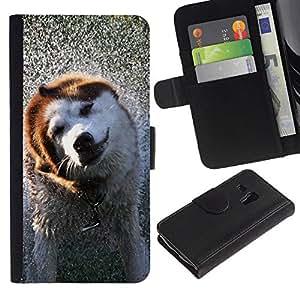All Phone Most Case / Oferta Especial Cáscara Funda de cuero Monedero Cubierta de proteccion Caso / Wallet Case for Samsung Galaxy S3 MINI 8190 // Cool Wet Dog